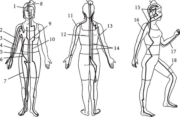 Схема классических меридианов: