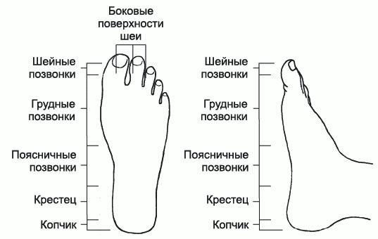 Алексей Садов - Грыжа