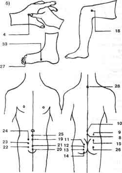 Сексуальные точки на теле человека